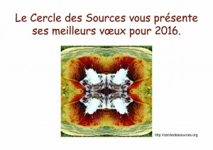 Voeux2016CercleDesSources