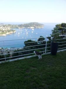 Noumi admirant la baie de Villefranche